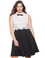 Lace Fit and Flare Dress Black/White