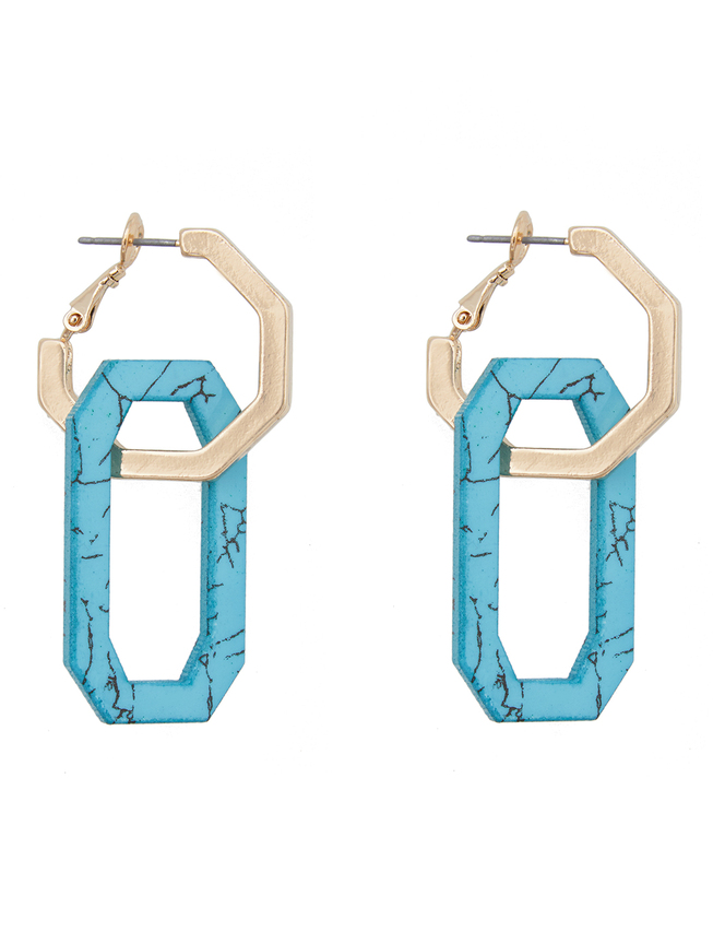 Resin and Metal Link Drop Earrings